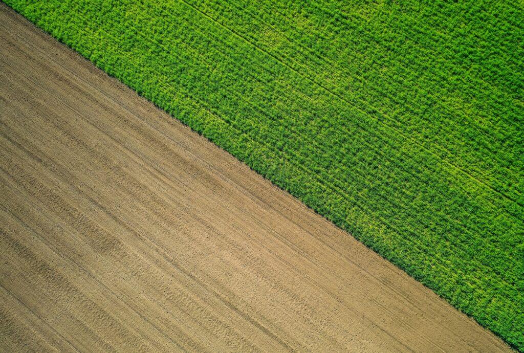 Promet nepokretnosti - Kupovina poljoprivrednog zemljišta